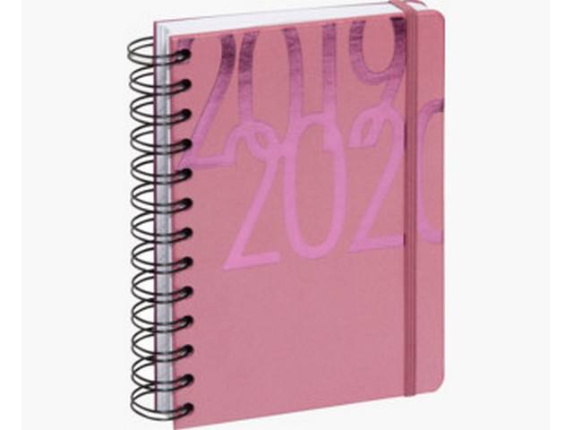Agenda Journalier 2019-2020 12x17 spiralé (rose)
